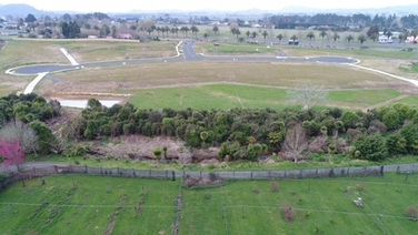 Lot 14 Parry Palm Avenue Waihiproperty carousel image