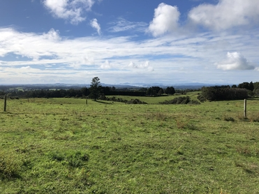 698 Lot 3, Pungaere Road Kerikeri property image