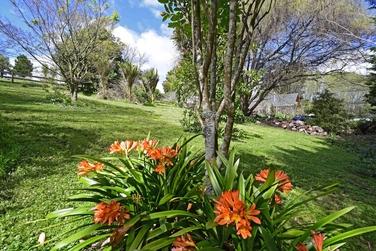 4 Windmill Lane Kaiwakaproperty carousel image