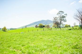 Lot 5/1106 Te Kawa Road Te Awamutu property image