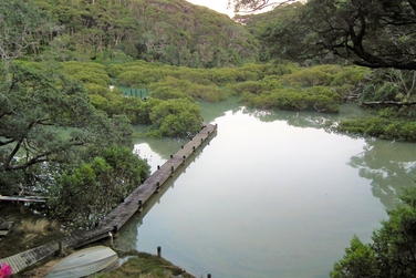 Lot 123 Moana Cove Kawau Islandproperty carousel image