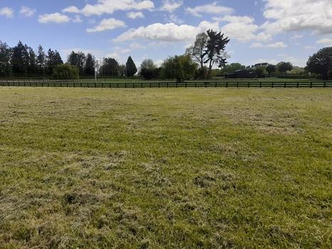 371 Mystery Creek Road Ohaupo property image
