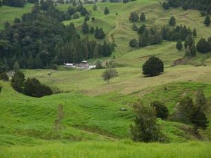 0 Omaunu Road Kaeo property image