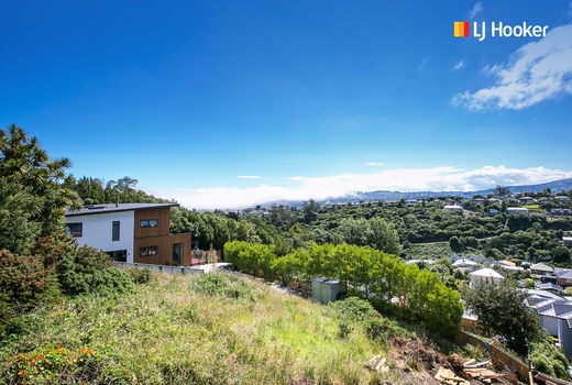 1 Lauriston Street Andersons Bay property image