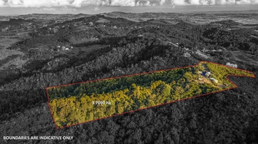 872 Ponga Road Opaheke property image