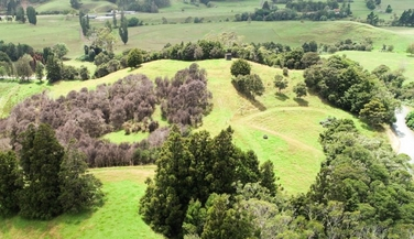 0 Diggers Valley Road Kaitaiaproperty carousel image