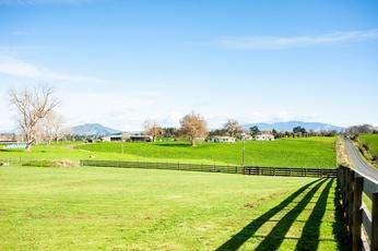 300 Puahue Road Te Awamutu property image
