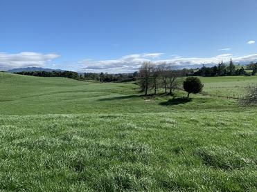 318 Pokuru Road Te Awamutu property image