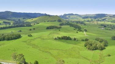 Kaipara Flats property image