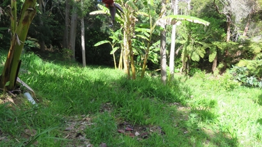 1a Whatuwhiwhi Road Karikari Peninsula property image