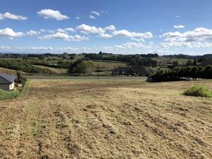 12 Grace James Road Pukekohe property image