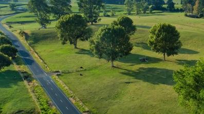 Lot 2 Wharepuhunga Road Te Awamutu property image