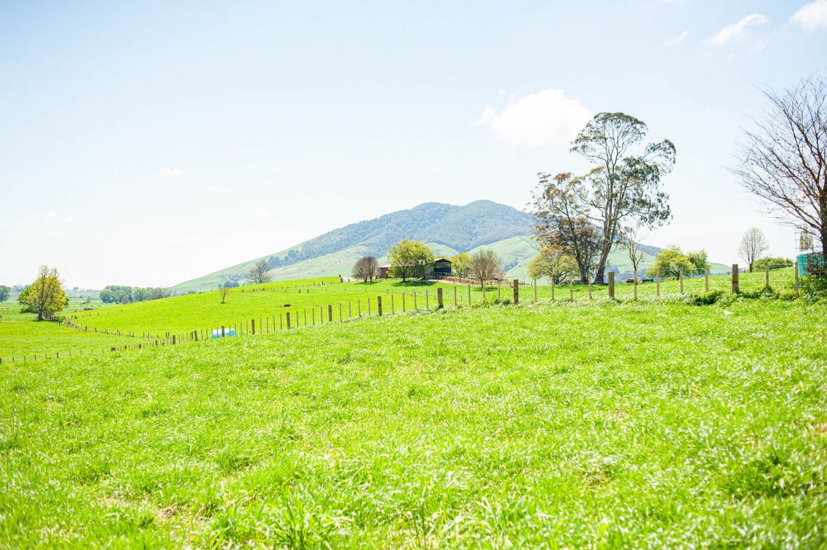 Lot 5/1106 Te Kawa Road Te Awamutuproperty slider image