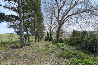960 Oneriri Road Kaiwaka property image