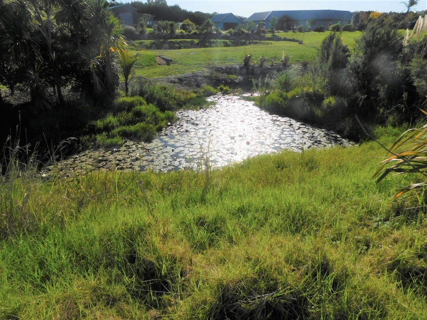 10 Riverglen Drive Paihia featured property image