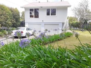 41 Titoki Street Masterton property image