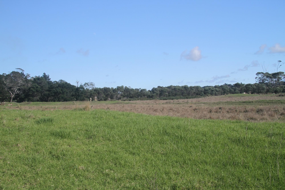 0 State Highway 1 Houhora featured property image