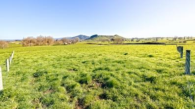 Lot 3/315 Te Kawa Road Te Awamutu property image