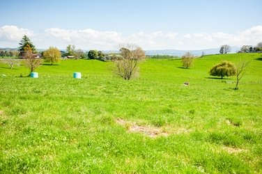 Lot 6/1104 Te Kawa Road Te Awamutuproperty carousel image