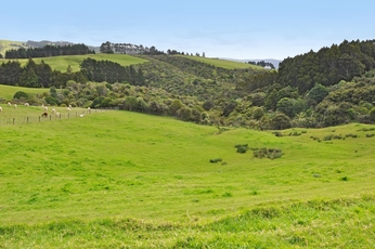 Lot 15 M Greenwood Road Leigh property image