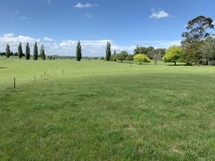 1139 Paterangi Road Te Awamutu property image