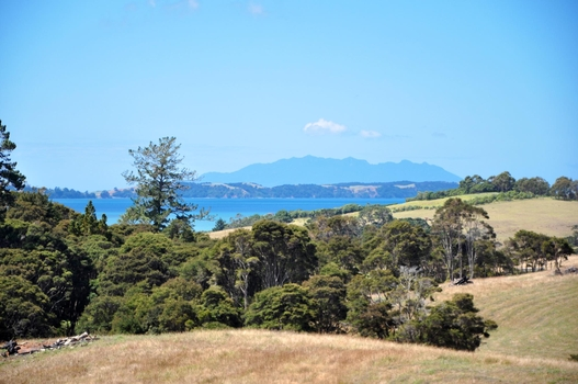 Lot 4/31 Martins Bay Road Mahurangi East property image