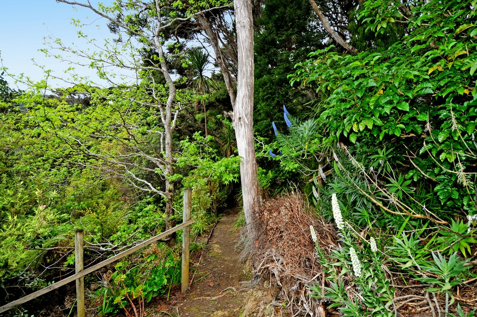 Lot 124 Moana Cove Kawau Islandproperty slider image