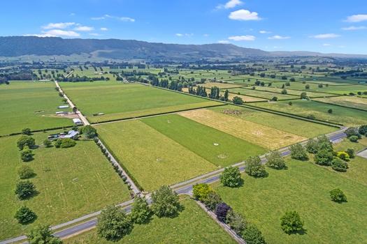 83 Harding Road Matamata sold property image