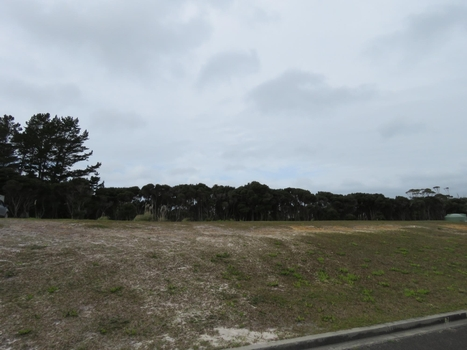 3 Banyan Road Karikari Peninsula property image