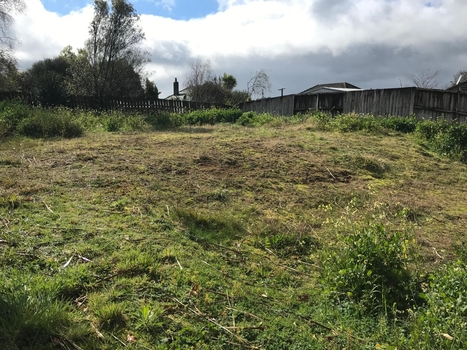 13a Albert Street Waihi property image