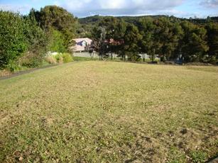 26 Wilson Road Haruru property image