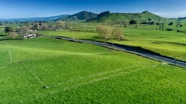 Lot 1/315 Te Kawa Road Te Awamutu property image