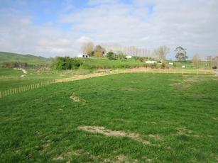 120 Dodd Road Morrinsville property image