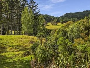 Paihia property image