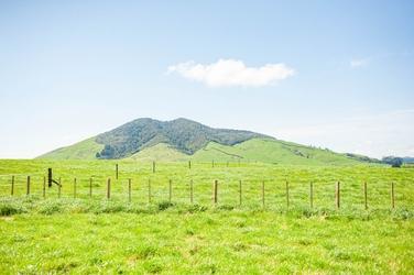 Lot 3/1195 Pokuru Road Te Awamutu property image